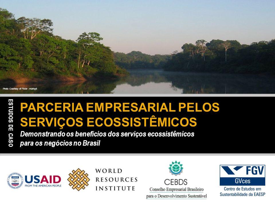 PARCERIA EMPRESARIAL PELOS SERVIÇOS ECOSSISTÊMICOS Demonstrando os benefícios dos serviços ecossistêmicos para os negócios no Brasil Photo Courtesy of Flickr : markg6 ESTUDOS DE CASO
