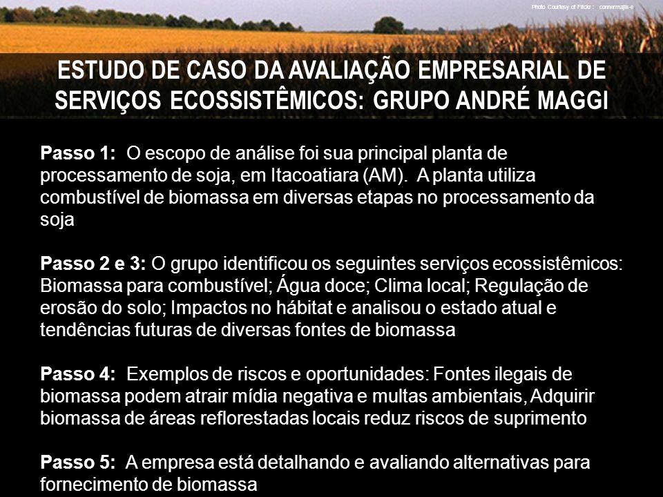 ESTUDO DE CASO DA AVALIAÇÃO EMPRESARIAL DE SERVIÇOS ECOSSISTÊMICOS: GRUPO ANDRÉ MAGGI Passo 1: O escopo de análise foi sua principal planta de processamento de soja, em Itacoatiara (AM).