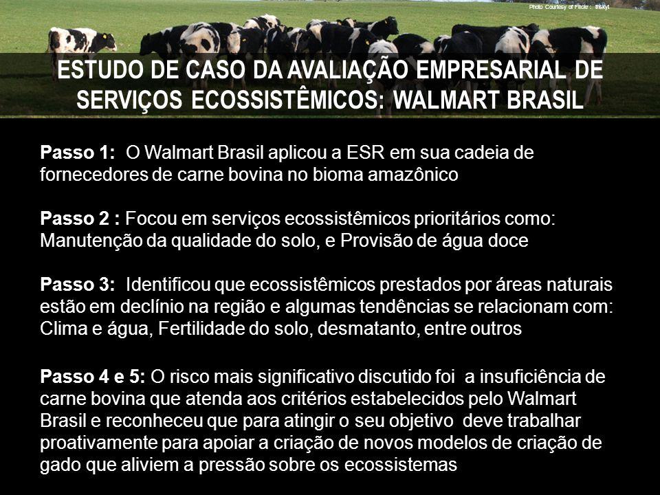 Photo Courtesy of Flickr : thskyt ESTUDO DE CASO DA AVALIAÇÃO EMPRESARIAL DE SERVIÇOS ECOSSISTÊMICOS: WALMART BRASIL Passo 1: O Walmart Brasil aplicou a ESR em sua cadeia de fornecedores de carne bovina no bioma amazônico Passo 2 : Focou em serviços ecossistêmicos prioritários como: Manutenção da qualidade do solo, e Provisão de água doce Passo 3: Identificou que ecossistêmicos prestados por áreas naturais estão em declínio na região e algumas tendências se relacionam com: Clima e água, Fertilidade do solo, desmatanto, entre outros Passo 4 e 5: O risco mais significativo discutido foi a insuficiência de carne bovina que atenda aos critérios estabelecidos pelo Walmart Brasil e reconheceu que para atingir o seu objetivo deve trabalhar proativamente para apoiar a criação de novos modelos de criação de gado que aliviem a pressão sobre os ecossistemas