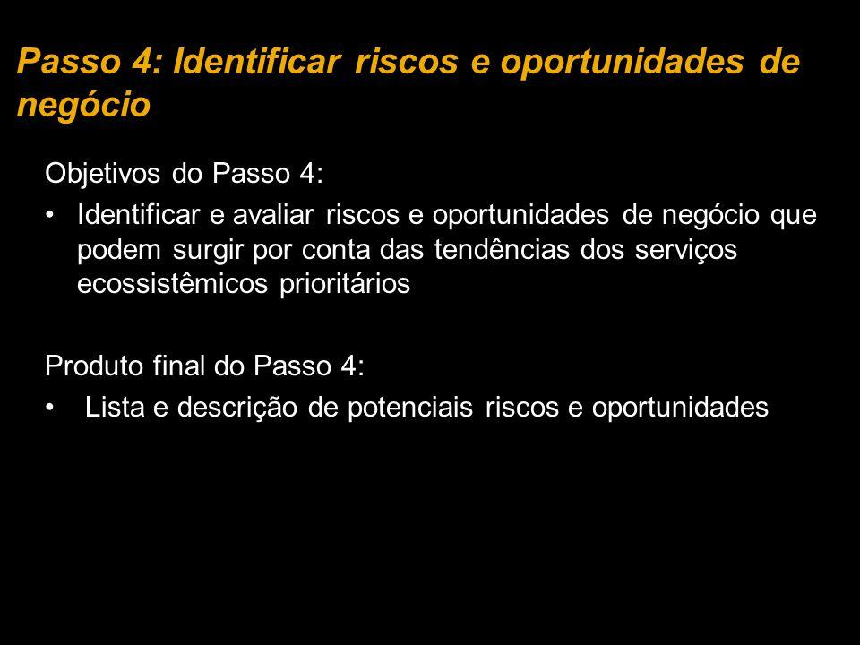 Objetivos do Passo 4: Identificar e avaliar riscos e oportunidades de negócio que podem surgir por conta das tendências dos serviços ecossistêmicos prioritários Produto final do Passo 4: Lista e descrição de potenciais riscos e oportunidades Passo 4: Identificar riscos e oportunidades de negócio
