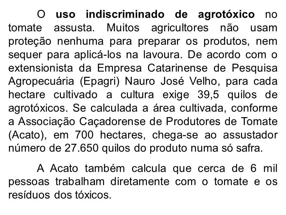 O uso indiscriminado de agrotóxico no tomate assusta. Muitos agricultores não usam proteção nenhuma para preparar os produtos, nem sequer para aplicá-