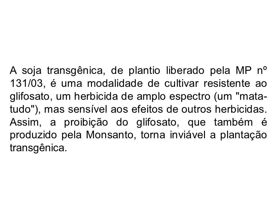 A soja transgênica, de plantio liberado pela MP nº 131/03, é uma modalidade de cultivar resistente ao glifosato, um herbicida de amplo espectro (um