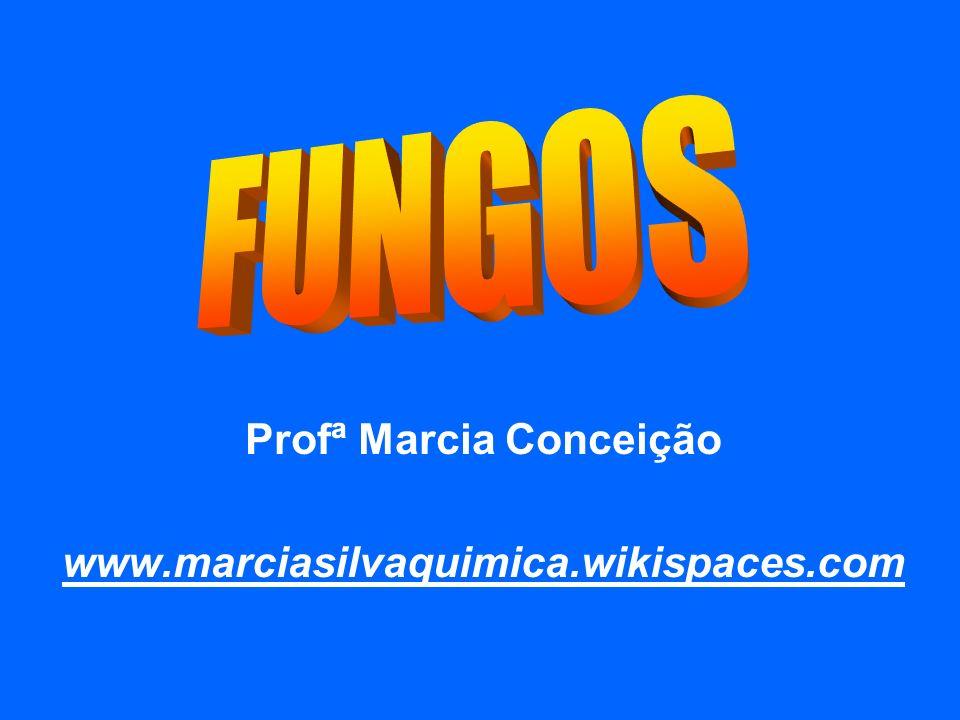 Profª Marcia Conceição www.marciasilvaquimica.wikispaces.com