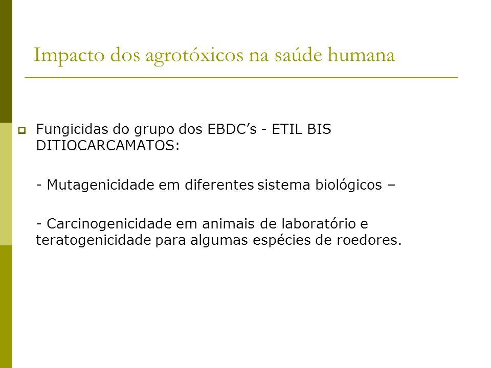 Impacto dos agrotóxicos na saúde humana Fungicidas do grupo dos EBDCs - ETIL BIS DITIOCARCAMATOS: - Mutagenicidade em diferentes sistema biológicos –