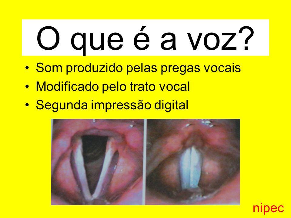 Psicodinâmica da voz Influenciamos e somos influenciados pela voz do outro.