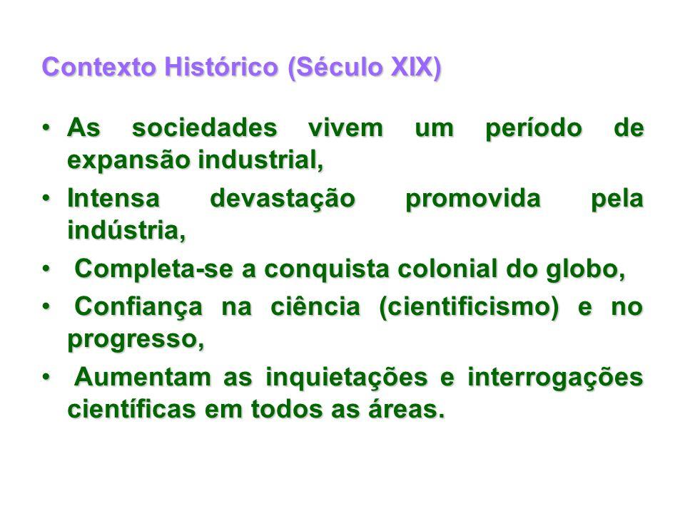 Contexto Histórico (Século XIX) As sociedades vivem um período de expansão industrial,As sociedades vivem um período de expansão industrial, Intensa d