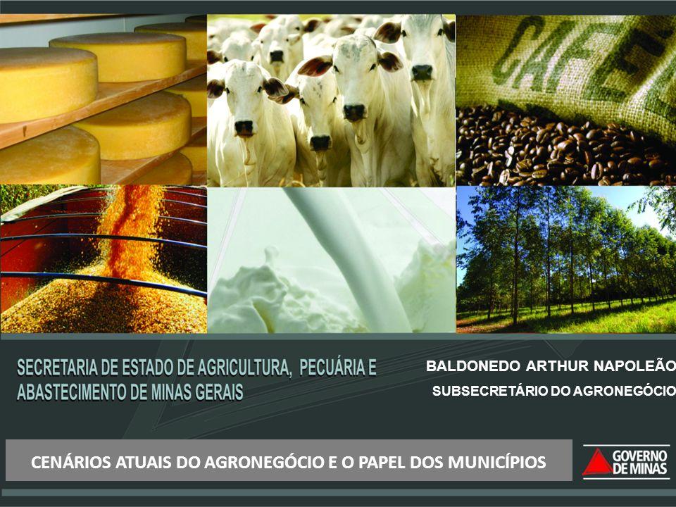 BALDONEDO ARTHUR NAPOLEÃO SUBSECRETÁRIO DO AGRONEGÓCIO CENÁRIOS ATUAIS DO AGRONEGÓCIO E O PAPEL DOS MUNICÍPIOS