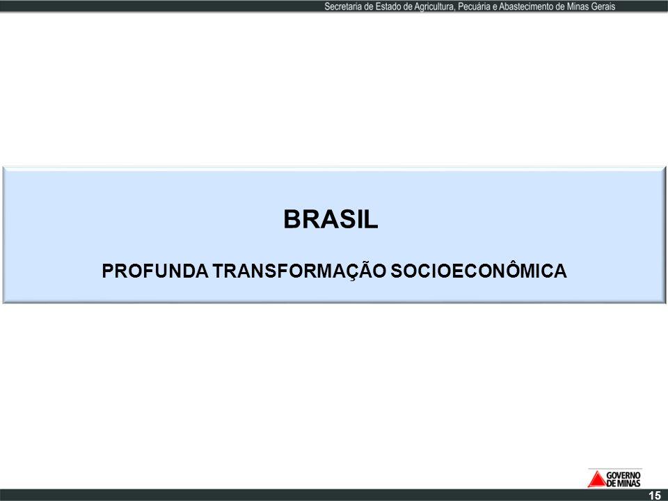 BRASIL PROFUNDA TRANSFORMAÇÃO SOCIOECONÔMICA 15
