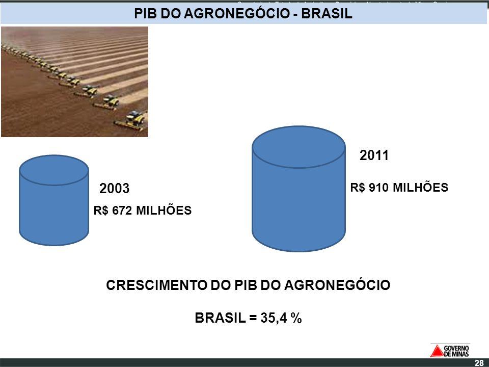 R$ 672 MILHÕES PIB DO AGRONEGÓCIO - BRASIL 2003 R$ 910 MILHÕES 2011 CRESCIMENTO DO PIB DO AGRONEGÓCIO BRASIL = 35,4 % 28