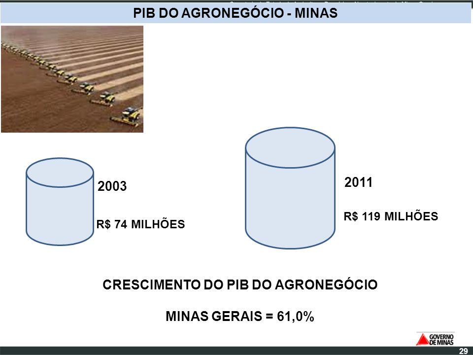 R$ 74 MILHÕES PIB DO AGRONEGÓCIO - MINAS CRESCIMENTO DO PIB DO AGRONEGÓCIO MINAS GERAIS = 61,0% R$ 119 MILHÕES 2003 2011 29