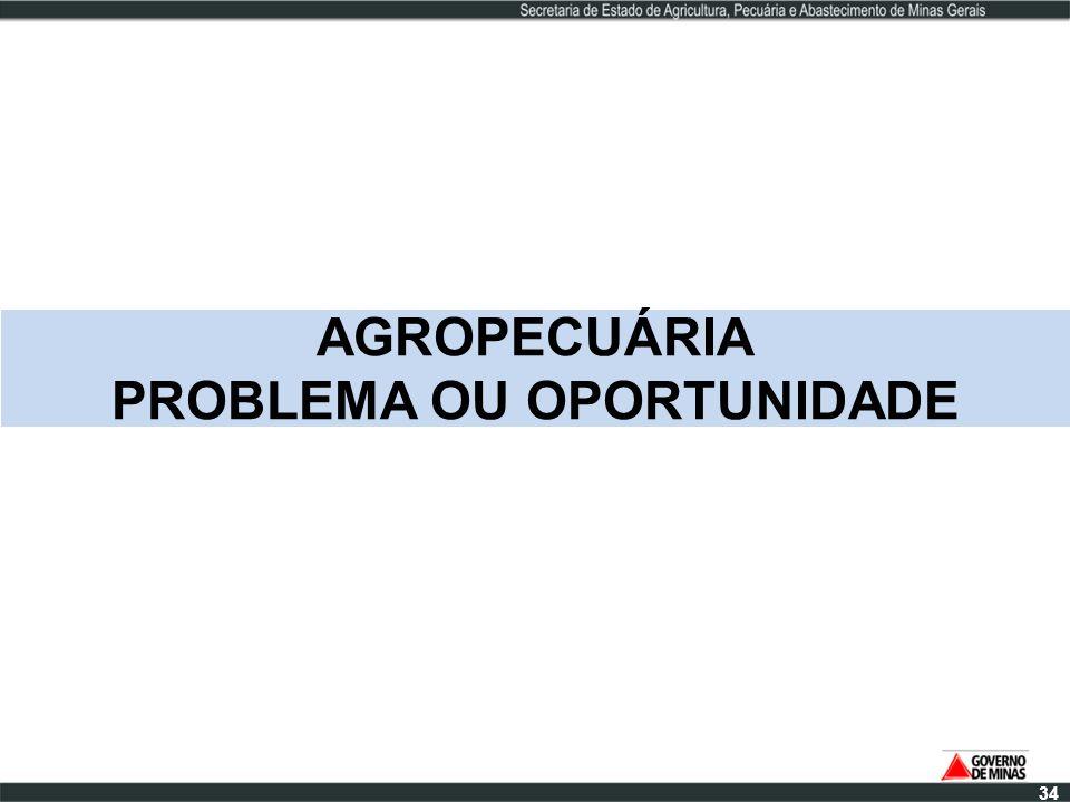 AGROPECUÁRIA PROBLEMA OU OPORTUNIDADE 34