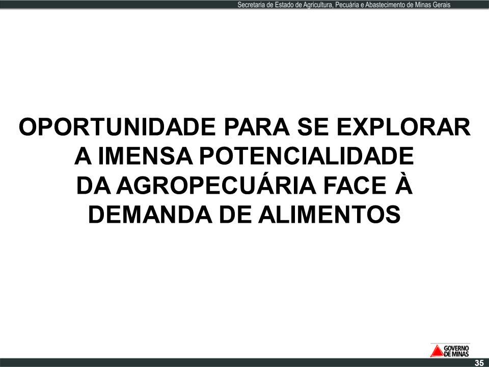 OPORTUNIDADE PARA SE EXPLORAR A IMENSA POTENCIALIDADE DA AGROPECUÁRIA FACE À DEMANDA DE ALIMENTOS 35