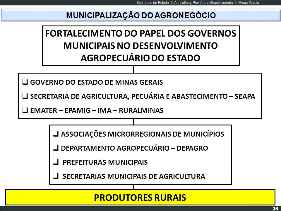 MUNICIPALIZAÇÃO DO AGRONEGÓCIO FORTALECIMENTO DO PAPEL DOS GOVERNOS MUNICIPAIS NO DESENVOLVIMENTO AGROPECUÁRIO DO ESTADO GOVERNO DO ESTADO DE MINAS GE