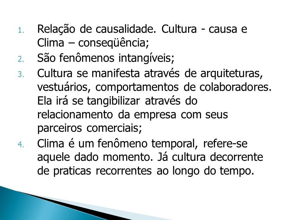 1. Relação de causalidade. Cultura - causa e Clima – conseqüência; 2. São fenômenos intangíveis; 3. Cultura se manifesta através de arquiteturas, vest
