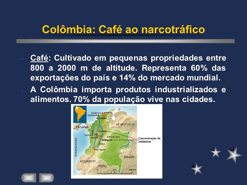 Colômbia: Café ao narcotráfico - Café: Cultivado em pequenas propriedades entre 800 a 2000 m de altitude.