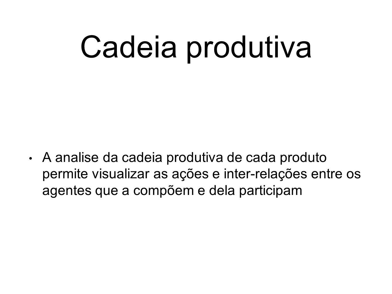 Cadeia produtiva A analise da cadeia produtiva de cada produto permite visualizar as ações e inter-relações entre os agentes que a compõem e dela part