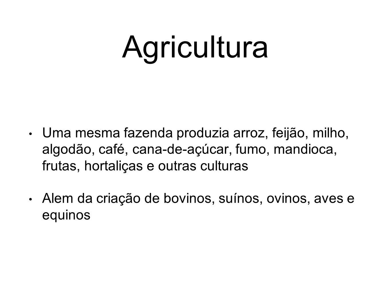 Agricultura Uma mesma fazenda produzia arroz, feijão, milho, algodão, café, cana-de-açúcar, fumo, mandioca, frutas, hortaliças e outras culturas Alem