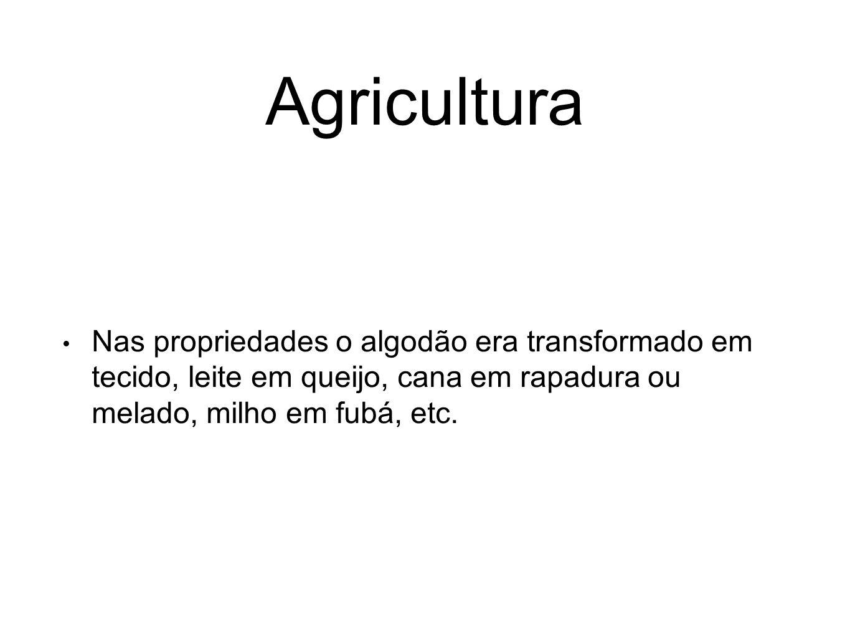 Agricultura Nas propriedades o algodão era transformado em tecido, leite em queijo, cana em rapadura ou melado, milho em fubá, etc.