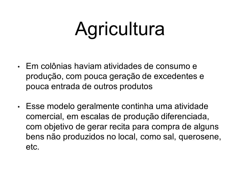 Agricultura Em colônias haviam atividades de consumo e produção, com pouca geração de excedentes e pouca entrada de outros produtos Esse modelo geralm