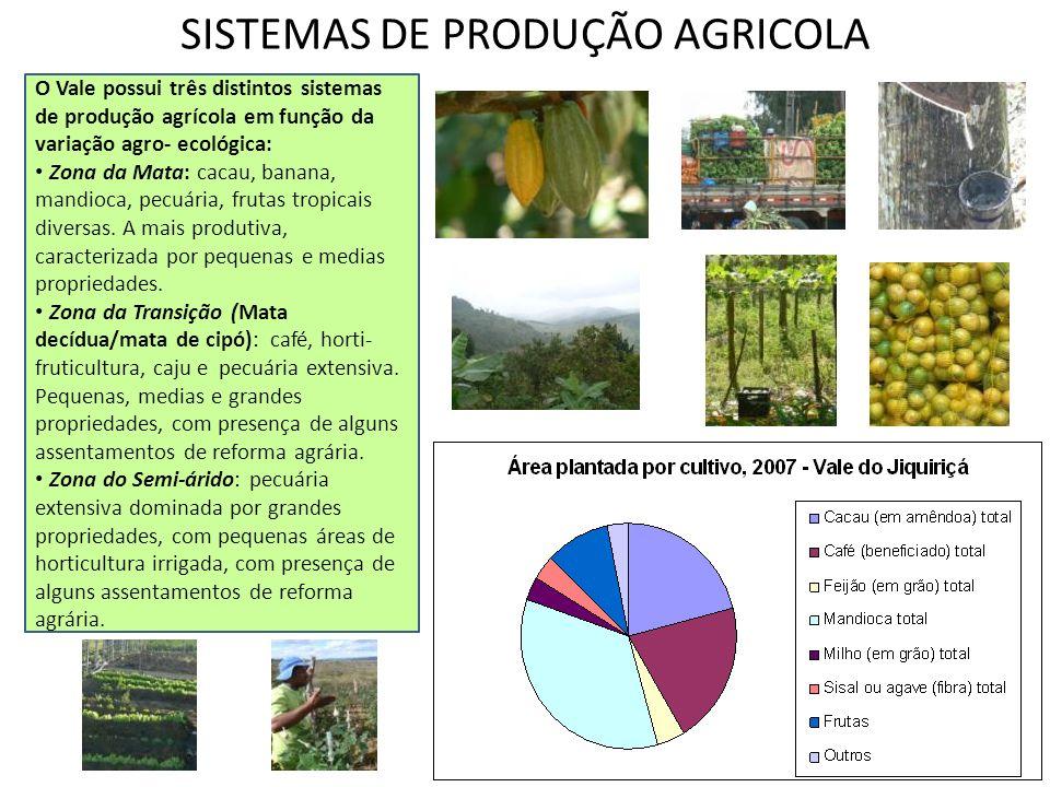 SISTEMAS DE PRODUÇÃO AGRICOLA O Vale possui três distintos sistemas de produção agrícola em função da variação agro- ecológica: Zona da Mata: cacau, b