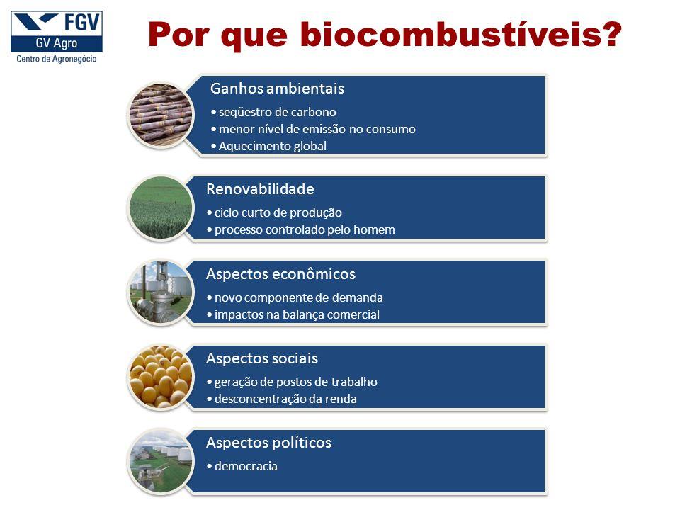 Por que biocombustíveis.