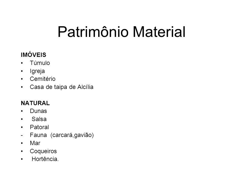 Patrimônio Material IMÓVEIS Túmulo Igreja Cemitério Casa de taipa de Alcília NATURAL Dunas Salsa Patoral -Fauna (carcará,gavião) Mar Coqueiros Hortênc