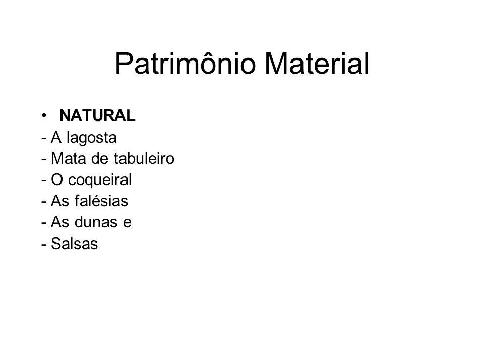 Patrimônio Material NATURAL - A lagosta - Mata de tabuleiro - O coqueiral - As falésias - As dunas e - Salsas