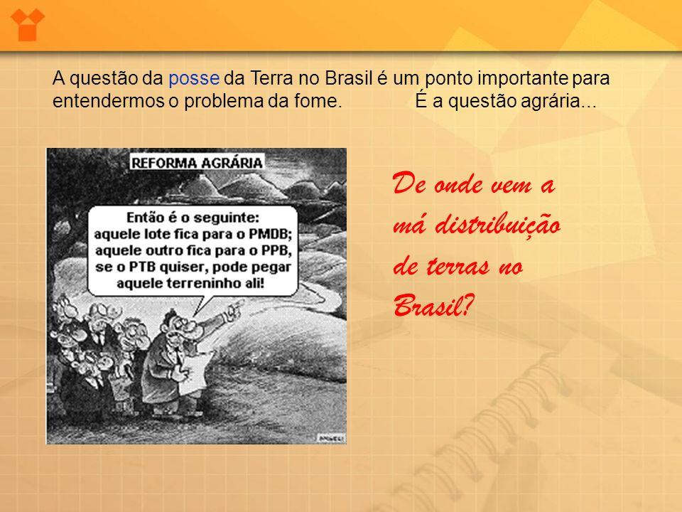A questão da posse da Terra no Brasil é um ponto importante para entendermos o problema da fome. É a questão agrária... De onde vem a má distribuição