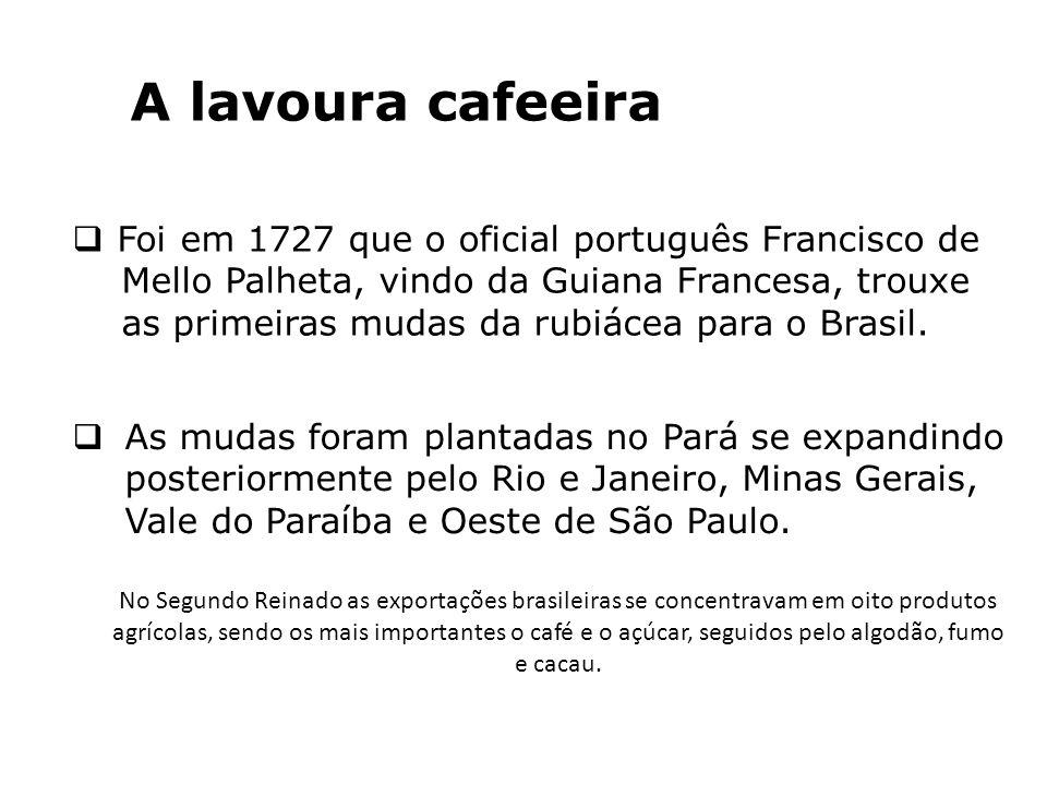 A lavoura cafeeira Foi em 1727 que o oficial português Francisco de Mello Palheta, vindo da Guiana Francesa, trouxe as primeiras mudas da rubiácea par