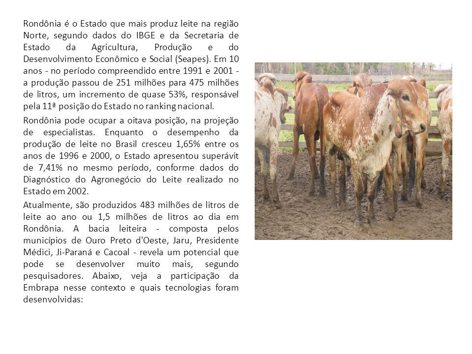 Rondônia é o Estado que mais produz leite na região Norte, segundo dados do IBGE e da Secretaria de Estado da Agricultura, Produção e do Desenvolvimen