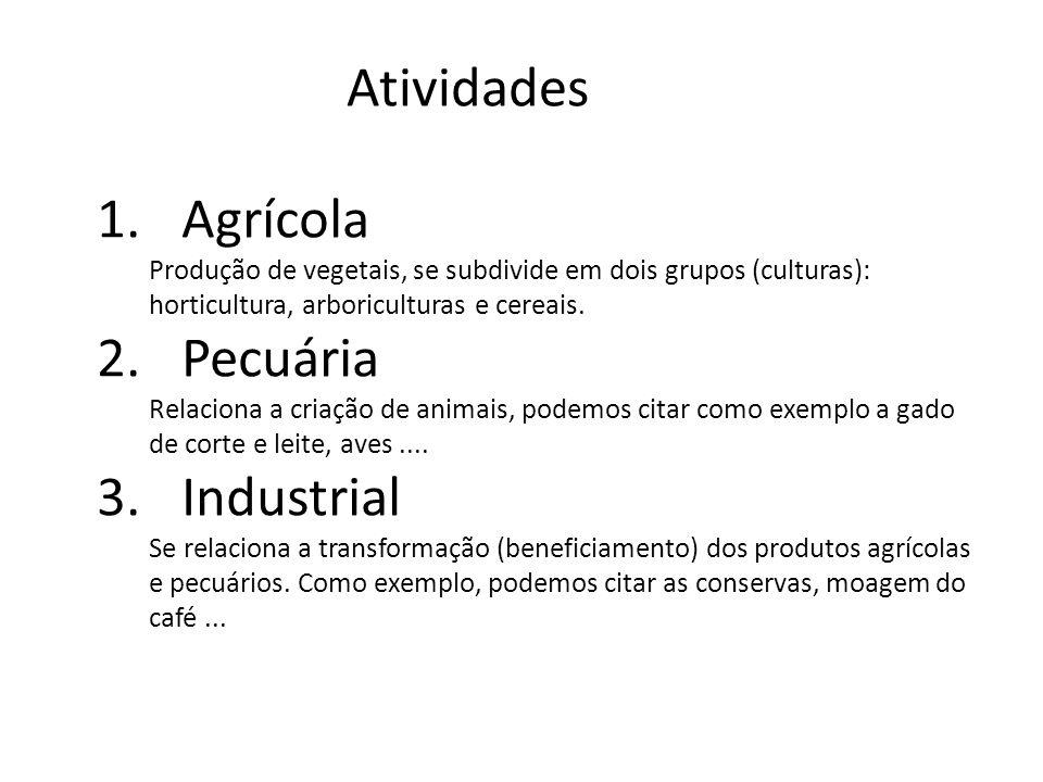 Atividades 1.Agrícola Produção de vegetais, se subdivide em dois grupos (culturas): horticultura, arboriculturas e cereais.
