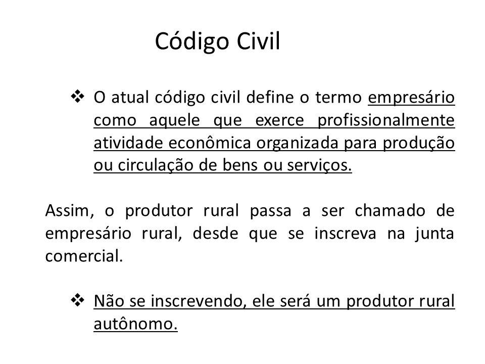 Código Civil O atual código civil define o termo empresário como aquele que exerce profissionalmente atividade econômica organizada para produção ou circulação de bens ou serviços.