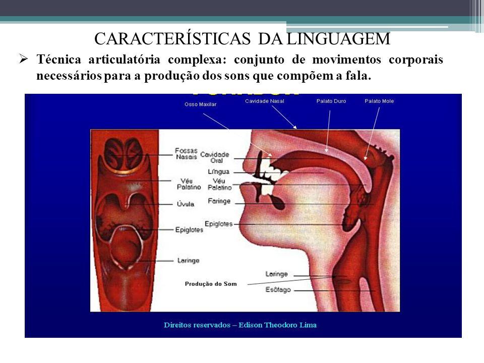 CARACTERÍSTICAS DA LINGUAGEM Técnica articulatória complexa: conjunto de movimentos corporais necessários para a produção dos sons que compõem a fala.