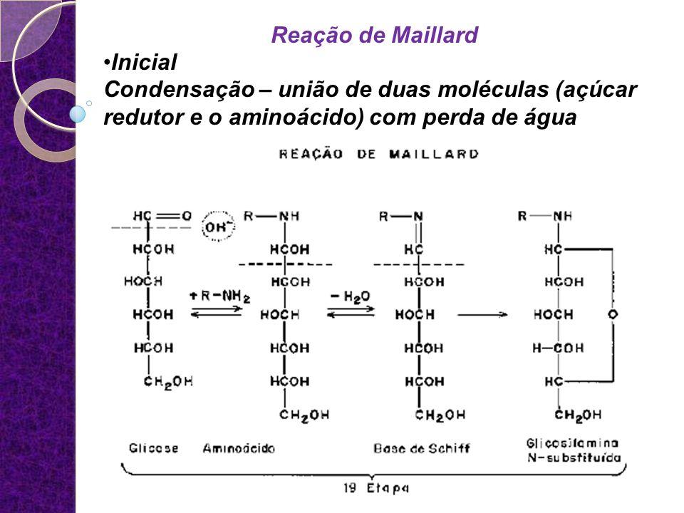 Reação de Maillard Inicial Condensação – união de duas moléculas (açúcar redutor e o aminoácido) com perda de água