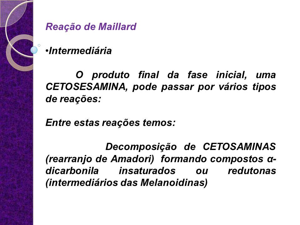 Reação de Maillard Intermediária O produto final da fase inicial, uma CETOSESAMINA, pode passar por vários tipos de reações: Entre estas reações temos