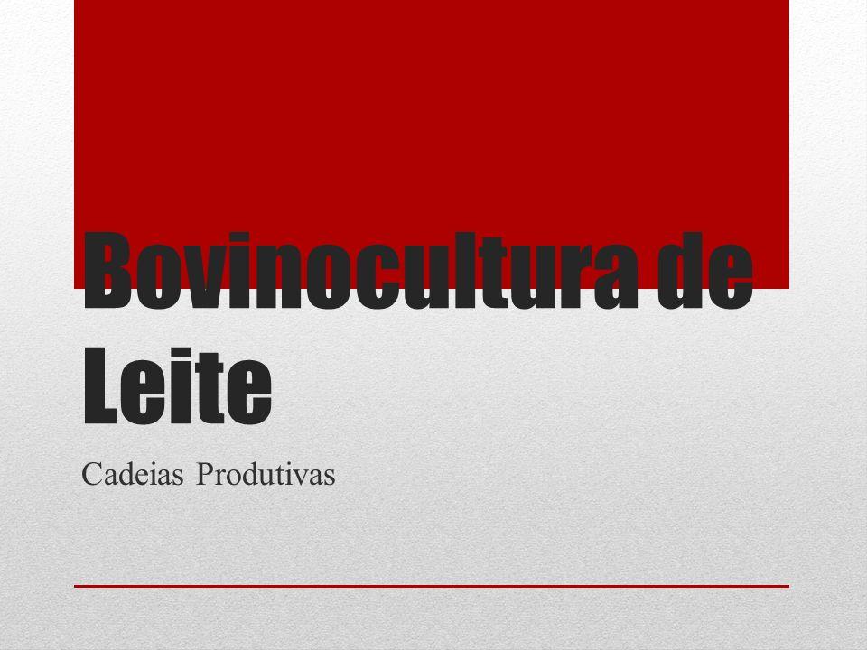 Bovinocultura de Leite Cadeias Produtivas