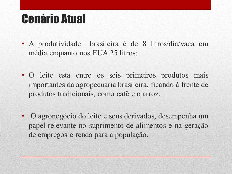 Cenário Atual A produtividade brasileira é de 8 litros/dia/vaca em média enquanto nos EUA 25 litros; O leite esta entre os seis primeiros produtos mais importantes da agropecuária brasileira, ficando à frente de produtos tradicionais, como café e o arroz.