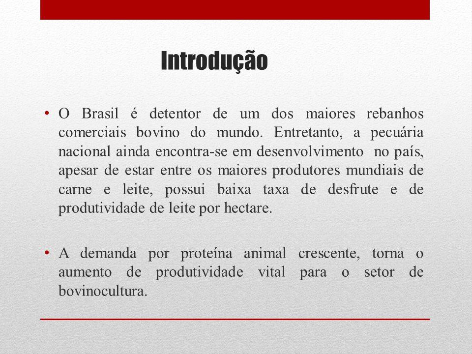 Introdução O Brasil é detentor de um dos maiores rebanhos comerciais bovino do mundo. Entretanto, a pecuária nacional ainda encontra-se em desenvolvim