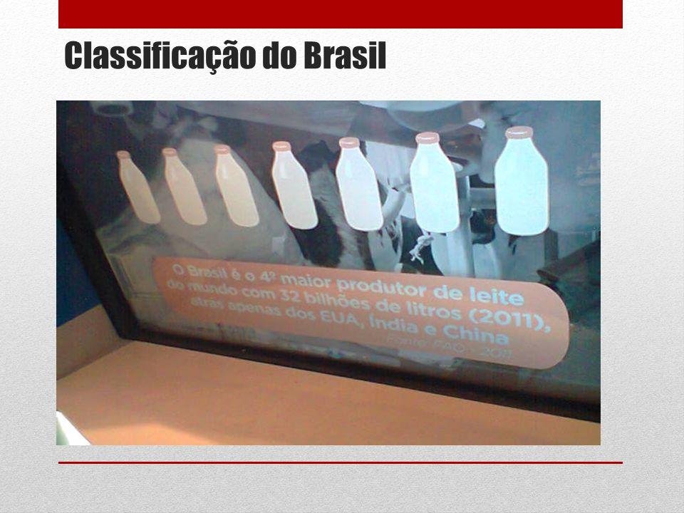 Classificação do Brasil