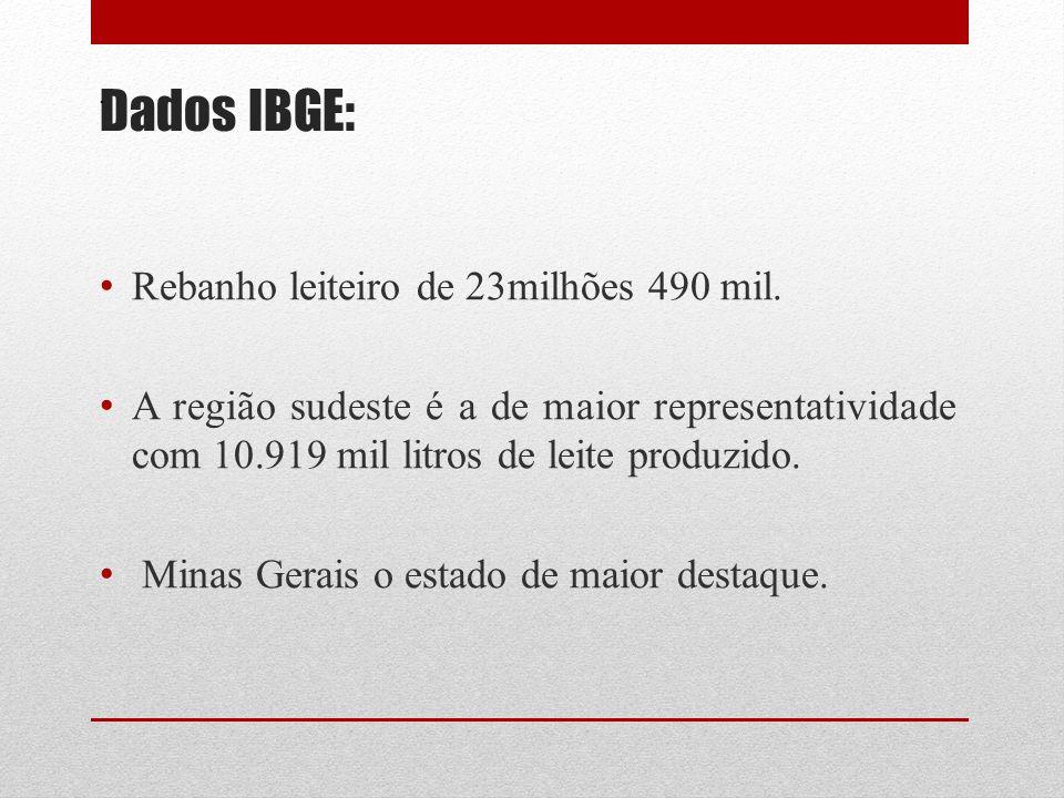 Referências Bibliográficas CASTRO, M.C.D.; SILVA, P.H.F.; PORTUGAL, J.A.B.
