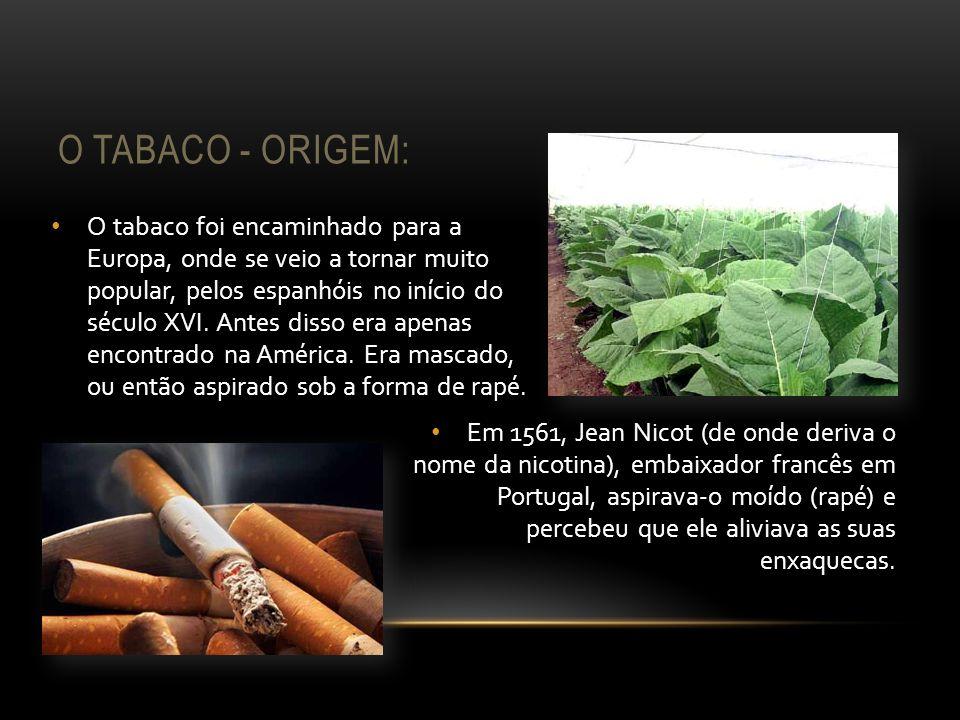 O TABACO - ORIGEM: O tabaco foi encaminhado para a Europa, onde se veio a tornar muito popular, pelos espanhóis no início do século XVI. Antes disso e