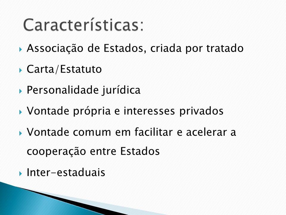 Associação de Estados, criada por tratado Carta/Estatuto Personalidade jurídica Vontade própria e interesses privados Vontade comum em facilitar e ace