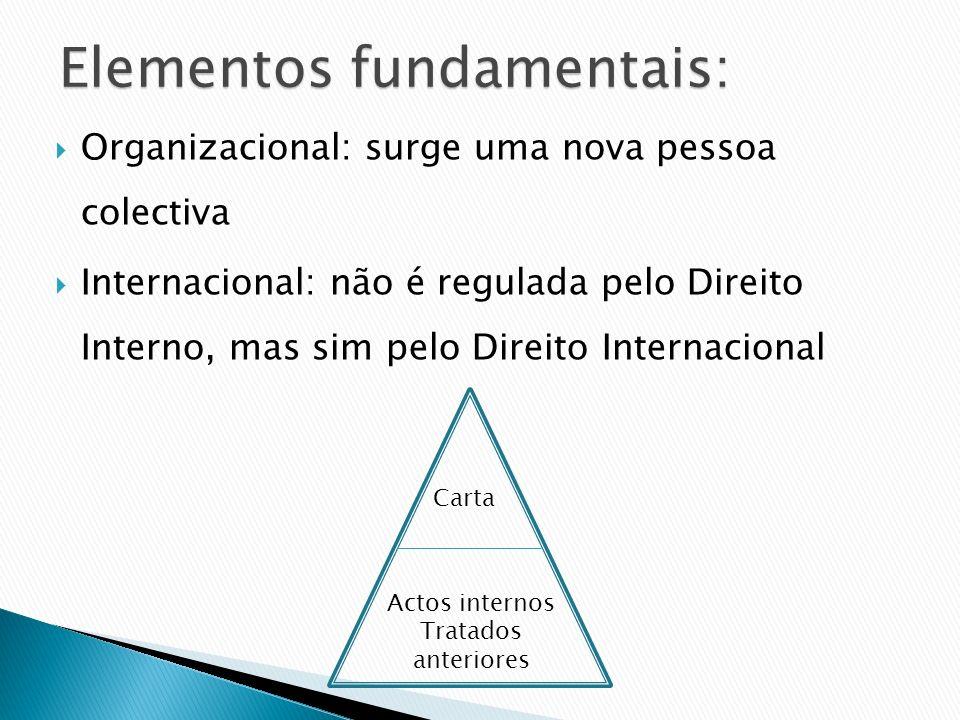 Organizacional: surge uma nova pessoa colectiva Internacional: não é regulada pelo Direito Interno, mas sim pelo Direito Internacional Carta Actos int