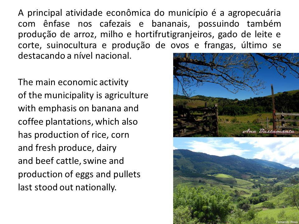 A principal atividade econômica do município é a agropecuária com ênfase nos cafezais e bananais, possuindo também produção de arroz, milho e hortifru