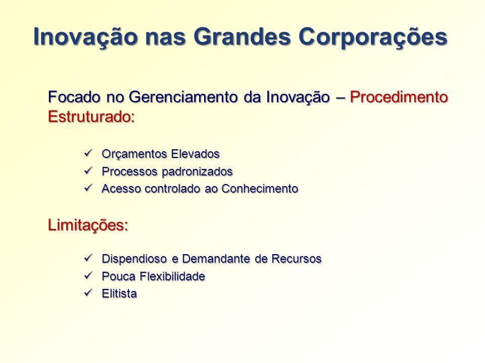 Inovação nas Grandes Corporações Orçamentos Elevados Orçamentos Elevados Processos padronizados Processos padronizados Acesso controlado ao Conhecimen