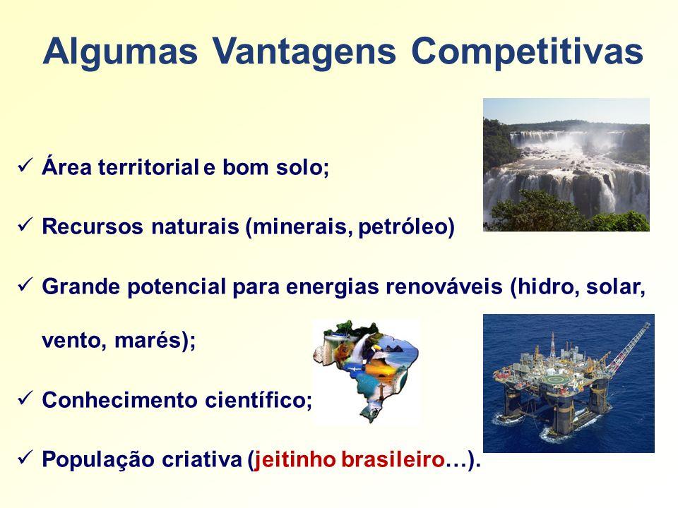 Algumas Vantagens Competitivas Área territorial e bom solo; Recursos naturais (minerais, petróleo) Grande potencial para energias renováveis (hidro, s