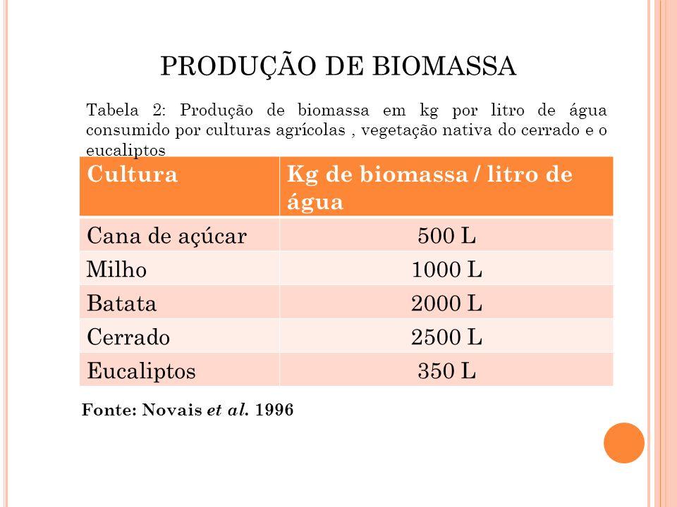 PRODUÇÃO DE BIOMASSA CulturaKg de biomassa / litro de água Cana de açúcar500 L Milho1000 L Batata2000 L Cerrado2500 L Eucaliptos350 L Fonte: Novais et