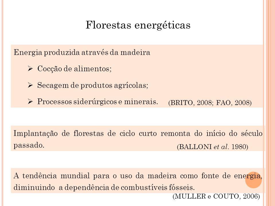 Florestas energéticas Energia produzida através da madeira Cocção de alimentos; Secagem de produtos agrícolas; Processos siderúrgicos e minerais. (BRI