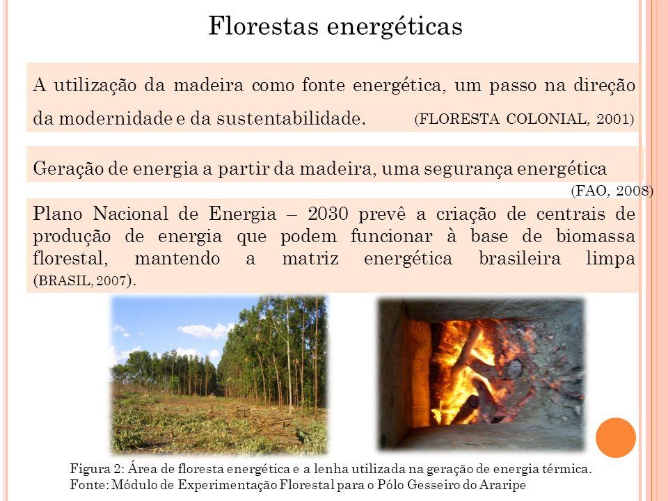A utilização da madeira como fonte energética, um passo na direção da modernidade e da sustentabilidade. (FLORESTA COLONIAL, 2001) Geração de energia