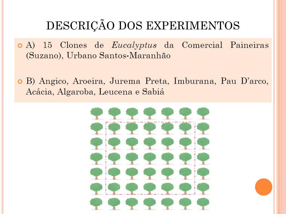 DESCRIÇÃO DOS EXPERIMENTOS A) 15 Clones de Eucalyptus da Comercial Paineiras (Suzano), Urbano Santos-Maranhão B) Angico, Aroeira, Jurema Preta, Imbura